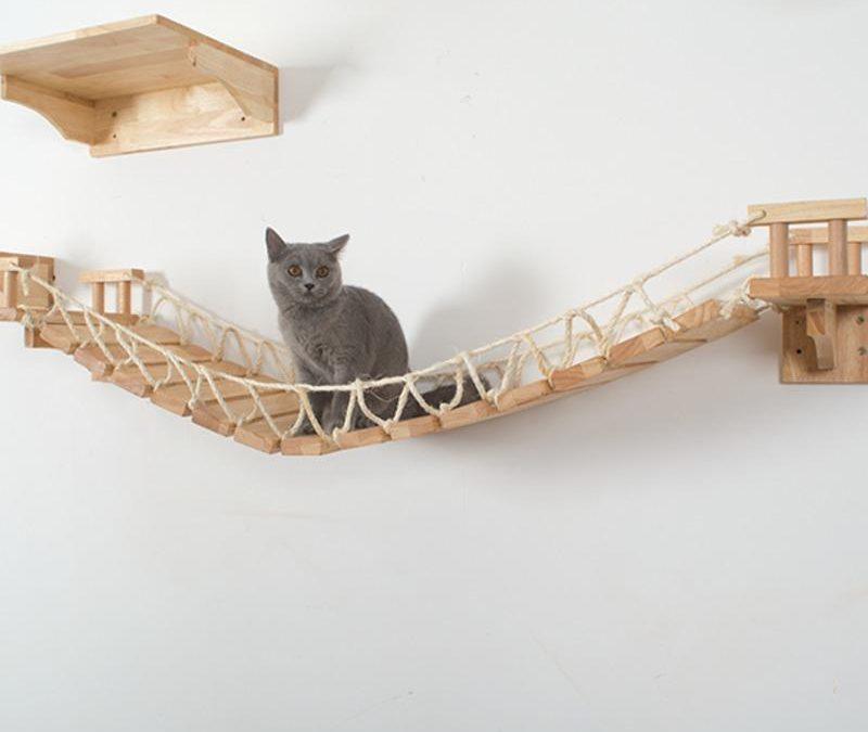 Le top des objets innovants pour votre chat