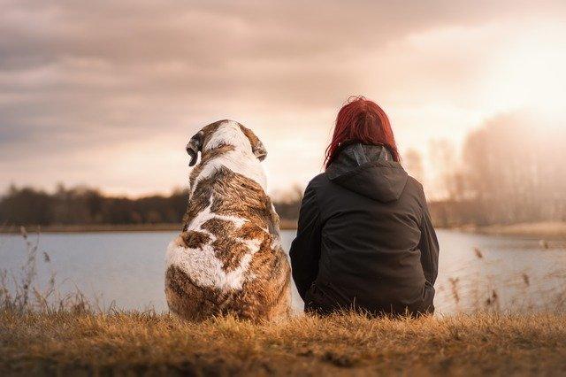 Pourquoi avoir un chien change-t-il la vie ?