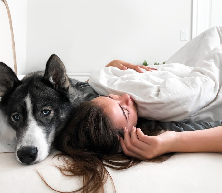 Comment avoir des conseils vétérinaires rapidement ?